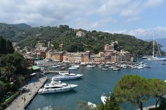 I would love to own a yacht. Portofino harbour in Italy.