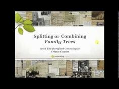 Do you need to know how to split or combine your family trees? Watch this quick video to learn more. #genealogy #familytree