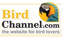 Pet Birds, Cockatiels, Macaws, Conures, Parakeets Care, Facts and Information at BirdChannel.com