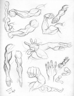 Fri 4: Arms and hands by genekelly on DeviantArt