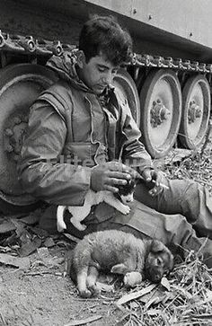 Do you get tired of the same old Vietnam war photos? Well don't worry because we've got you covered with plenty of unseen pictures of what life was like for soldiers in Vietnam as well as their civilian counterparts in America. Military Dogs, Military Art, Vietnam War Photos, South Vietnam, Hanoi Vietnam, War Image, War Dogs, War Photography, Animal Photography