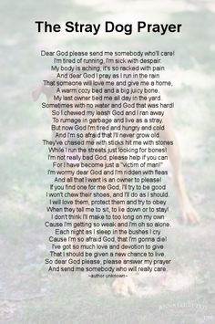 The Stray Dog Prayer. People should open their eyes.The world is not so pink after all...                                                                                                                                                     More