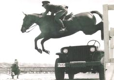 18 Cavalry Photos You Have to See to Believe | Horse Nation