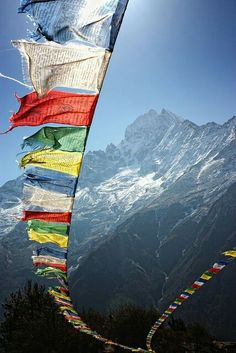 Tibetan prayer flags..... :) wish you had some....