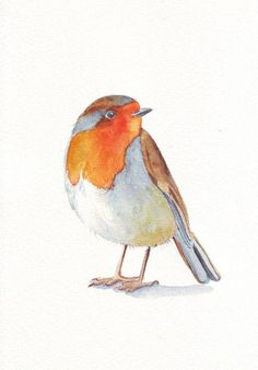 Robin Painting  -  bird print of watercolor painting - 5 by 7 print. $15.00, via Etsy.