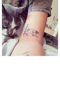 Un chat tacheté et joueur sur le bras
