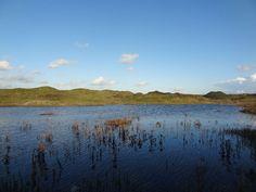 Bridgend: Kenfig Nature Reserve