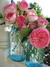 Rose Petals and Rust
