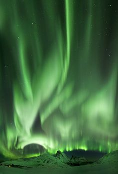 Auroras boreales desde Rekvik, Noruega