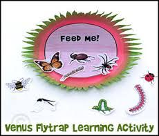 Paper venus fly trap - Google Search