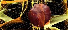 problemas de corazón influyen en con problemas cognitivos