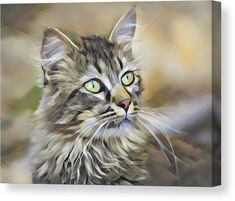 This Polygon Cat Canvas gets printed on one of our premium canvases and then stretched on a wooden frame. Various sizes available. All prints include a 30-day money-back guarantee. Diana van Tankeren - Art for your Home Decor and Interior Design. #catsart #catswallart #catswalldecor #catscanvas #cats #whiskers #mouser #polygonart #lowpolyart Digital Art Photography, Creative Photography, Canvas Art, Canvas Prints, Framed Prints, American Curl, Polygon Art, Exotic Shorthair, Thing 1
