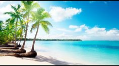http://ift.tt/2jQugir -  Does World Ventures DreamTrips really work? Do those vacations really exist or is it all a fake Scam? That's exactly what is answered in this video. A member of this Travel Club shares her personal experience of a Dreamtrip to Mexico - Playa Del Carmen. She is not one to just do something because someone said it works she shares the details in above video!  Love to share this Video: https://youtu.be/P6t6Qb2ml7M  Learn more about Dreamtrips:  http://ift.tt/2hb118P…