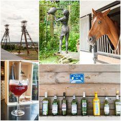 Houthalen-Helchteren is een heel fijne plek om te wandelen, fietsen, paardrijden, proeven, kijken, tot rust te komen,... Een plek om volop te genieten.