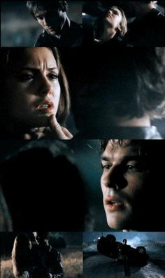 "Delena S01xE11 ""Bloodlines"""