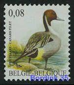 4091 - Vogels - Pijlstaart - 0,08 - André Buzin