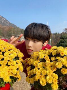 Def Not, Kim Sun, Light Of My Life, To My Future Husband, K Idols, Boy Groups, Kpop, Twitter, Beautiful