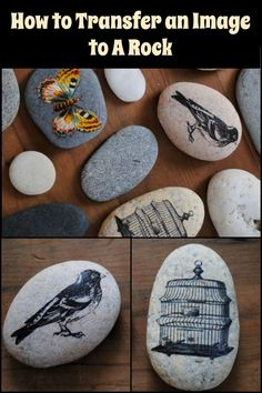 Give personalized gifts by learning how to transfer an image to a rock. Give personalized gifts by learning how to transfer an image to a rock. Give personalized gifts by learning how to transfer an image to a rock. Pebble Painting, Pebble Art, Stone Painting, Painting On Wood, Stone Crafts, Rock Crafts, Diy Crafts To Sell, Arts And Crafts, Rock Painting Ideas Easy