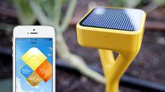 Sensors for your garden