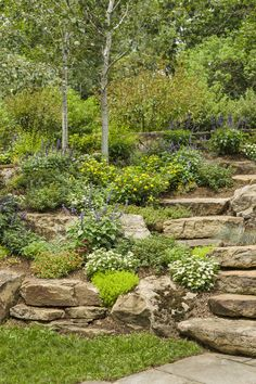 If you live in a dry and arid climate then your desert landscaping is going to take a little more planning than some other parts of the country. desert landscaping will have to work with a plan that includes only plants and trees that Cool Landscapes, Fountains Backyard, Garden Design, Landscaping Tips, Outdoor, Landscape Design, Landscaping With Rocks, Landscape, Backyard