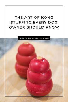 Dog Treat Recipes, Dog Food Recipes, Kong Treats, Dog Enrichment, Frozen Dog, Stuffing Recipes, Homemade Dog Treats, New Puppy, Dog Toys