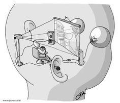 consciousness - Google-Suche