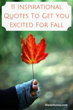 If you're a fan of fall, you're probably counting down the days until September 22nd. I can't make it get here any faster, but I can share some quotes with you that will put you in the mood for the arrival of glorious autumn.