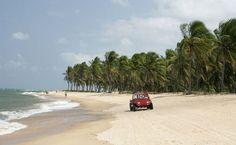 Maceió, AL. Uma das preferidas dos maceioenses, a Praia do Gunga lembra uma península, com mar de um lado e a Lagos do Roteiro do outro. No meio, muitos coqueiros