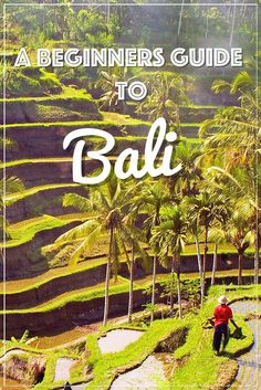 A Beginners Guide to Bali l Where to go, what to do and where to sleep in Bali ... Guest post by @charlottedovle on Reporter On The Road