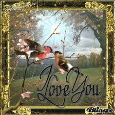 Love You Birds