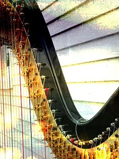 Love the sound of the harp-- and am still shooting daggers at my child of giving it up after 5 years of  lessons.  Ugh.