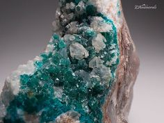 #Dioptase #KaokoveldNamibia MO2 Store link in bio If you're looking for anything in particular just use the store's search function under the header photo!   #ZAminerals #RockOn #Crystals #Minerals #NoFilter #RockHound #mineralcollector #mineralcollection #RockCollection #RockShop #Geology #MineralsForSale #CrystalsForSale #crystal #crystallove #crystalhealing #cristais #holistic #gem #instagood #igdaily #igers #africancrystals