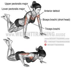 fitness Knee push-up. A compound exercise for beginners. Synergistic muscles: Upper Pectoralis Major, Anterior Deltoid, and Triceps Brachii. Dynamic stabilizer: Biceps Brachii (short head only). Fitness Workouts, Training Workouts, Sixpack Workout, Compound Exercises, Muscle Anatomy, Chest Workouts, Chest Exercises, Workout Guide, Workout Videos