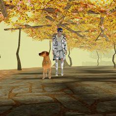 take a walk with dog