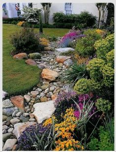 Cool yard ideas