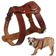 Hand Made Genuine Leather Pet Dog Harness for Medium Large Dogs Beagle Bulldog #Unbranded