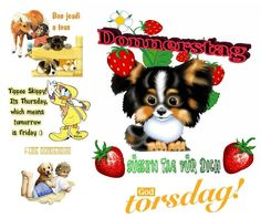 McK GB Donnerstag BBCode für Jappy und Co auf der Homepage - halfpint Science Lesson Plans, Free Lesson Plans, Thursday Greetings, Puppy Images, Dental Plans, Free Phone Wallpaper, Free Coupons, Geek Stuff, Teddy Bear