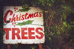 christmas trees | Flickr - Photo Sharing!