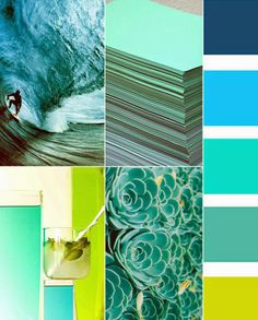 Citron and turquoise- bright and appealing color combination. I like the texture/pattern of the plant in the bottom right image as well.