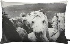 Få en bid af den smukke Islandske natur scene ind i hjemmet med denne  Icelandic Horses pude. Pynt med den i børneværelset eller i stuen. Magasin.dk - Køb online'