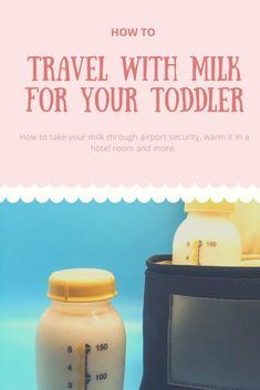 Traveling With Milk: Tips and Tricks for Traveling With Your Toddler's Milk What to expect at Airport Security, Keeping Milk cold in a hotel room with no fridge and more! Toddler Travel, Travel With Kids, Family Travel, Baby Travel, Family Adventure, Adventure Travel, Love Dairy, Milk Alternatives, Bottle Warmer