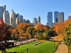 new york in autumn - Szukaj w Google