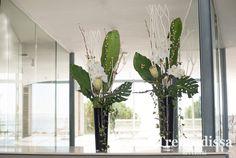 Decoración floral para empresas, negocios y comercios. Con flor seca y preservada o flores naturales.  #Decoración #floral #empresas, #negocios #comercios#flor #seca  #preservada #flores #naturales.