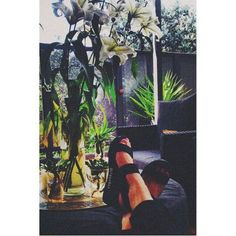 Chill with plants