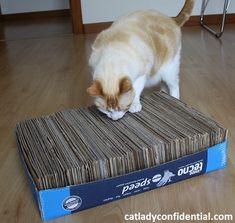 After showing you how to make a cat house with a t-shirt, I thought I should bring you another fun and easy project for cat lovers. So today I'm going to show you how to make a cat cardboard … Cardboard Cat Scratcher, Cardboard Cat House, Diy Cat Toys, Dog Hammock, Mr Cat, Cat House Diy, Gatos Cats, Cat Scratching Post, Cat Condo