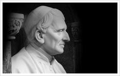 Internationalisation: John Henry Newman Irish, University, Statue, Irish Language, Ireland, Colleges, Community College, Sculptures, Sculpture