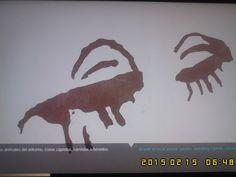 Fotografías, calcos, copias de petroglifos en el Museo Arqueológico Nacional de España