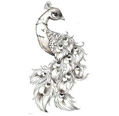 Phoenix bird sketch peacock tattoo 19 ideas for 2019 Small Peacock Tattoo, Peacock Drawing, Peacock Feather Tattoo, Peacock Art, Feather Tattoos, Peacock Feathers, Leg Tattoos, Body Art Tattoos, Tatoos