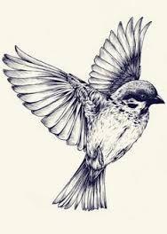 bird flying bird art - Google Search