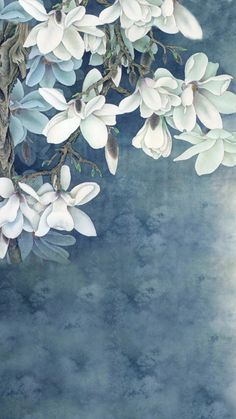 Purchase White Flowers Paintings Photography Backdrops Photo Props Studio Background from Ann Pekin Pekin on OpenSky. Flower Backgrounds, Dark Backgrounds, Wallpaper Backgrounds, Wallpaper Ideas, Phone Backgrounds, Flower Wallpaper, Iphone Wallpaper, Flor Magnolia, Art Asiatique